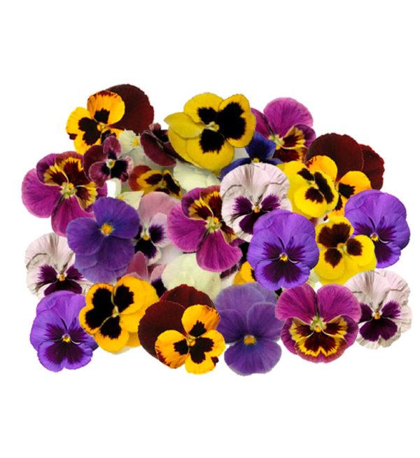 Flores decoración comestibles