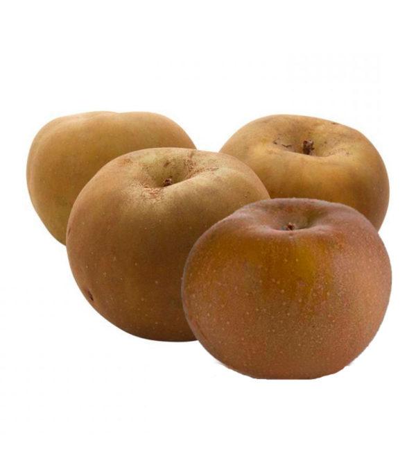 manzana reineta